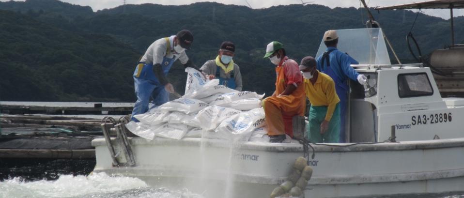 「海底浄化事業の実施」